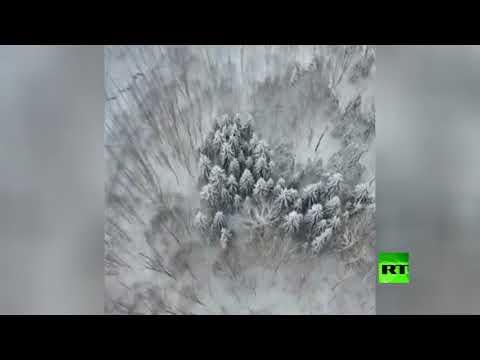 لقطات جوية للغابات المغطاة بالثلوج في إيران