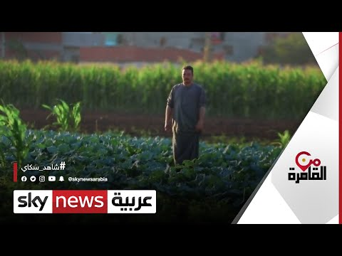 مبادرة حياة كريمة رمز مشاريع التنمية في مصر